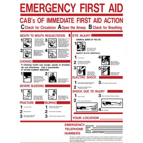 emergency fist aid