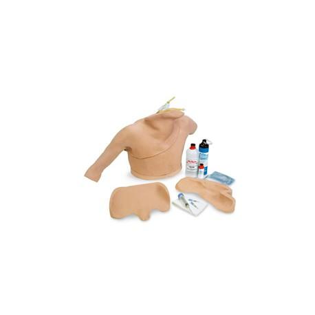 Life/form® Heart Catheterization Simulator