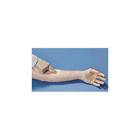 Life/form® IV Demonstration Arm - White